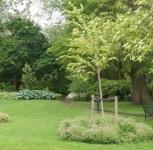http://nieuwepark.nl/de-wijk/groen/